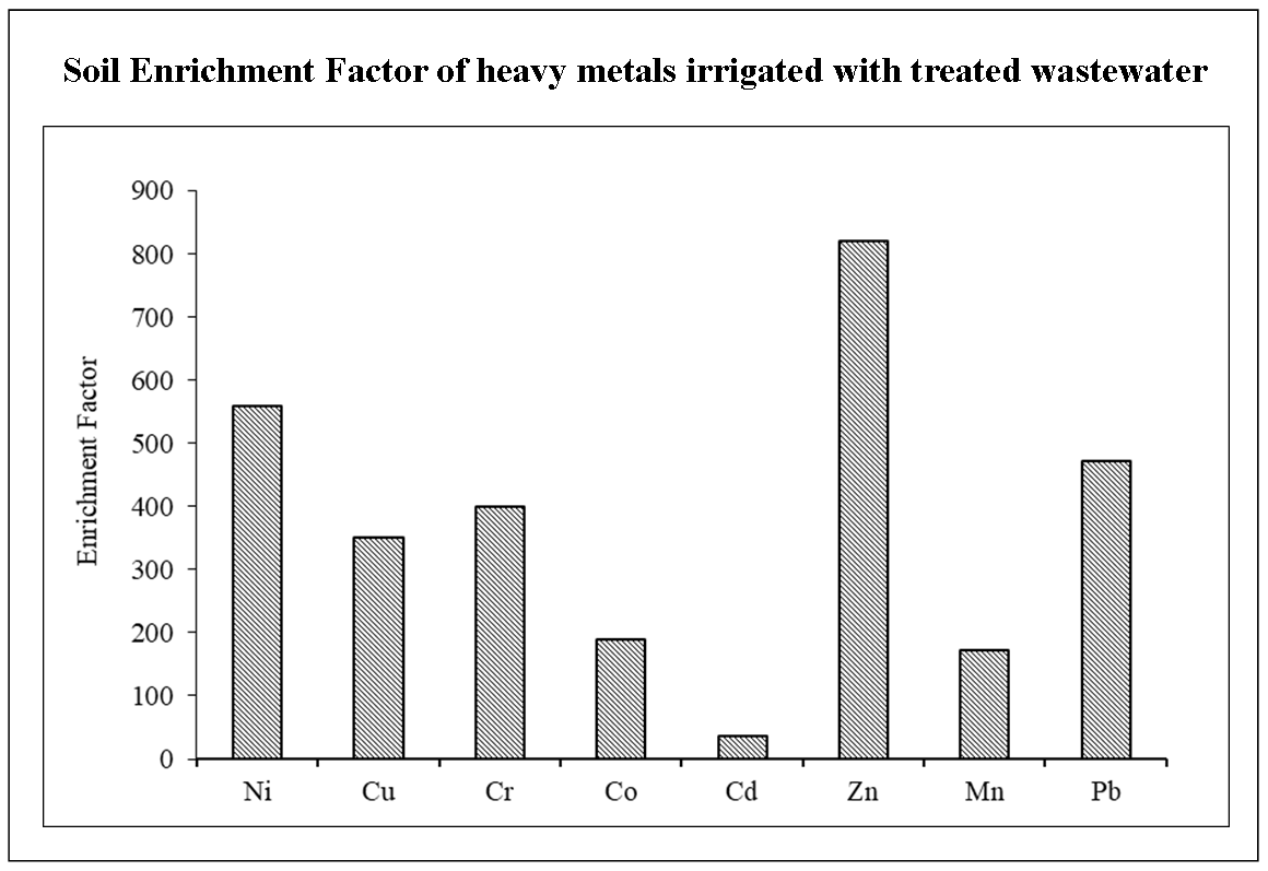 Effect of Wastewater on the Soil and Irrigation Process: A Laboratory Study